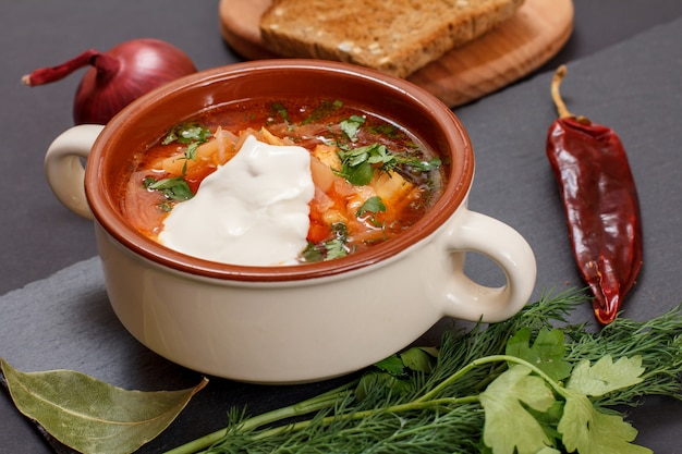 Ukrainian traditional borsch in porcelain bowl with sour cream, rye bread, onion, parsley and chilli pepper on stone board.