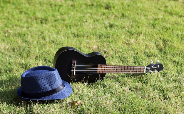 Ukulele with hat on green grass