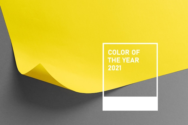 Ultimate gray and illuminating colors of the year 2021. color trend palette. stylish background