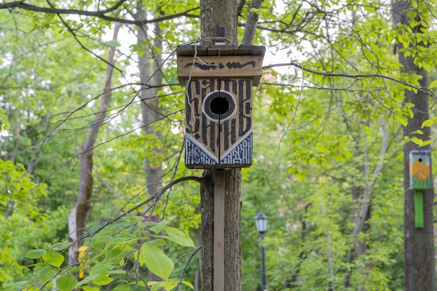 Ulyanovsk, russia - july 25 2021: the funny painted birdhouses on the tree. handmade wooden nesting box.