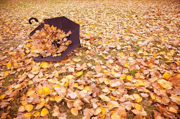 秋に落ち葉で覆われた傘。テキスト用のスペース。