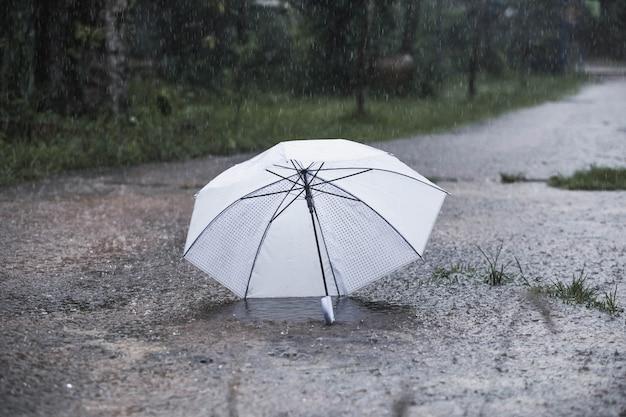 빈티지 톤의 비에 우산