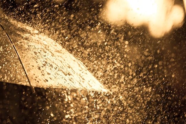 햇빛 비에 우산
