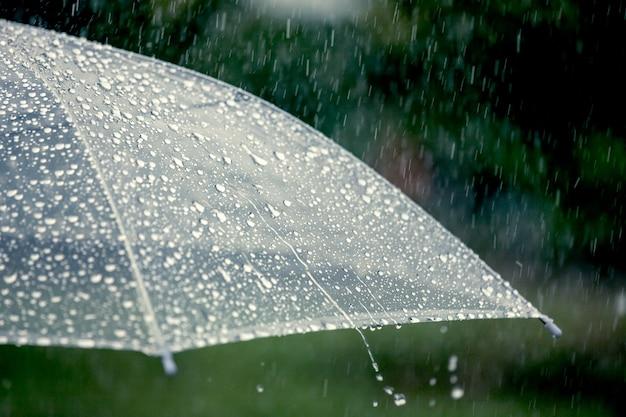 雨の中で傘