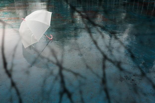 Зонтик в дождливый день.