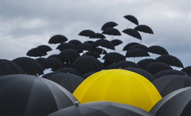 Umbrellas fly out