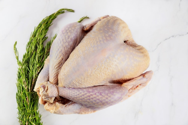 Uncooked raw whole turkey isolated on white background.