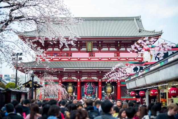 Undefined tourist in sensoji shrine. sensoji temple at asakusa district in tokyo, japan.