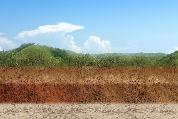 丘の景色の背景と上部に草が付いている断面地球の地下土壌層