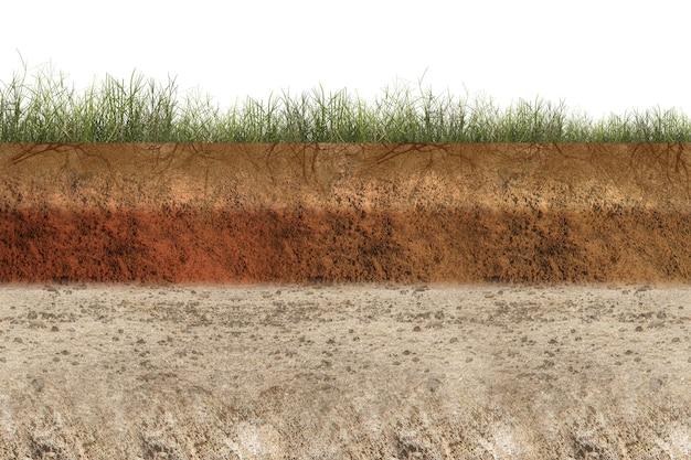 白い背景で上部に草が付いている断面地球の地下土壌層