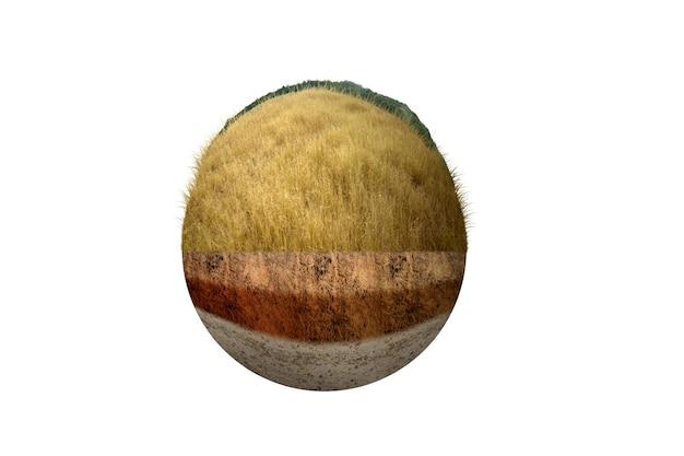 上部にサバンナがある断面地球の地下土壌層。環境コンセプト