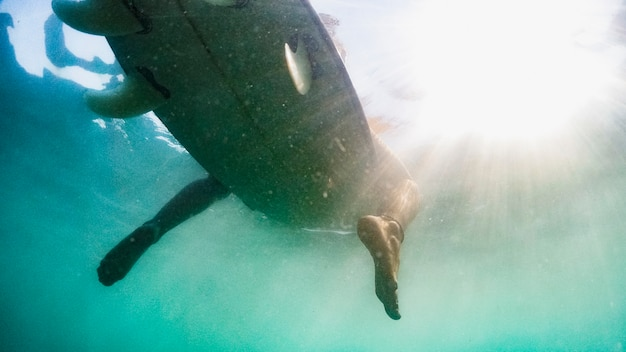 Underwater shot of woman with surfboard