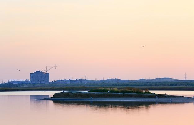 원자력 발전소와 갈매기 무리의 미완성 탈영 에너지 블록 (우크라이나 크리미아의 scholkino 타운 근처).