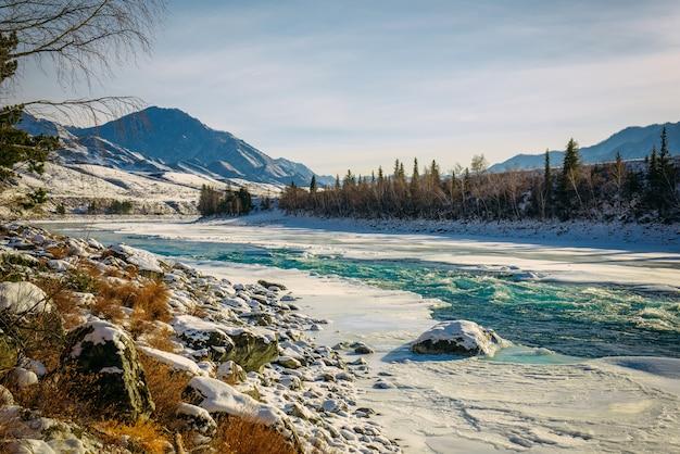 Незамерзшая бирюзовая река катунь в горах алтая в морозный зимний день. невероятный пейзаж горной долины в солнечном свете.