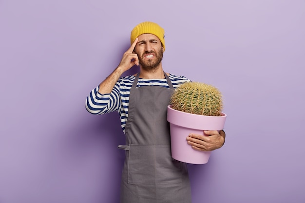 Fiorista maschio infelice ha mal di testa, tocca la tempia con il dito indice, vestito con maglione a righe e grembiule, tiene cactus in vaso