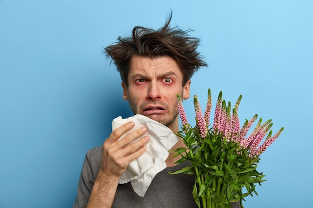 Unhappy sick european man suffers from rhinitis and allergy, sneezes in napkin, has problems with breathing, holds blooming plant, looks frustrated , poses over blue wall, feels unwell