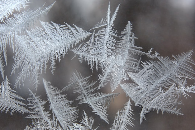 The unique ice patterns on window glass