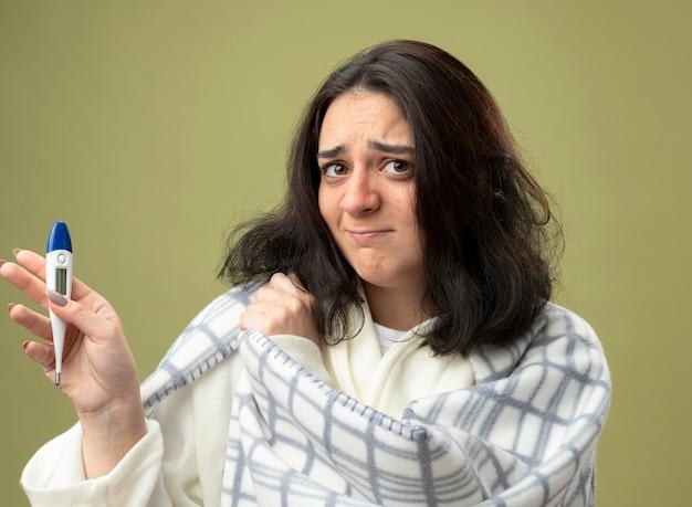 Soddisfatto giovane indoeuropeo ragazza malata indossando accappatoio avvolto in plaid che mostra termometro afferrando plaid guardando la telecamera isolata su sfondo verde oliva
