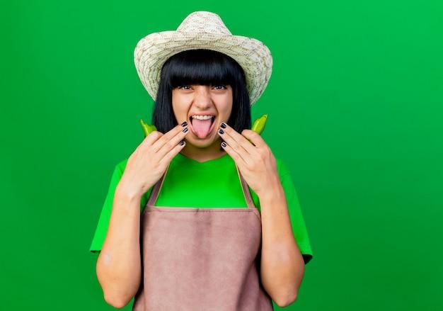Il giovane giardiniere femminile dispiaciuto in cappello da giardinaggio d'uso uniforme sporge la lingua tiene il peperoncino spezzato