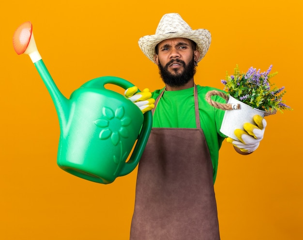 Unpleased young gardener afro-american guy wearing gardening hat and gloves holding out watering can with flower in flowerpot at front isolated on orange wall