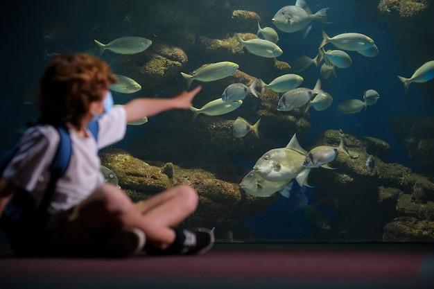 Unrecognizable child spending time in aquarium