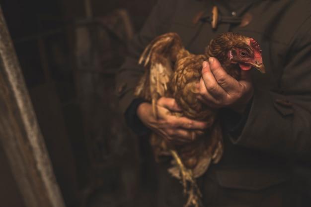 Unrecognizable farmer with chicken