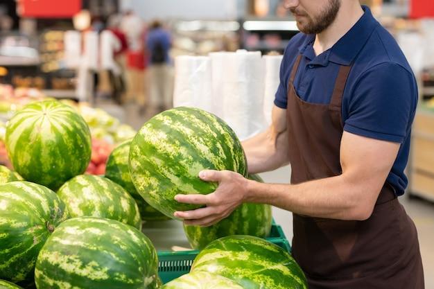 新鮮なスイカを着て制服を着ている認識できないスーパーマーケットの労働者