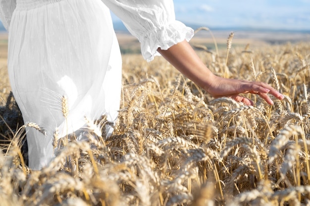 Unrecognizable woman gently touches growing wheat at golden sunset carefree female walking along a c...