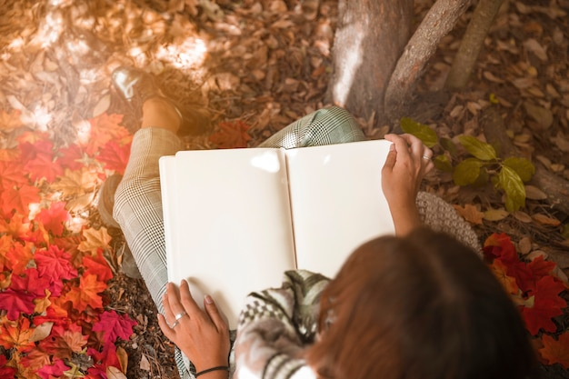 Unrecognizable woman reading on sunny day in forest