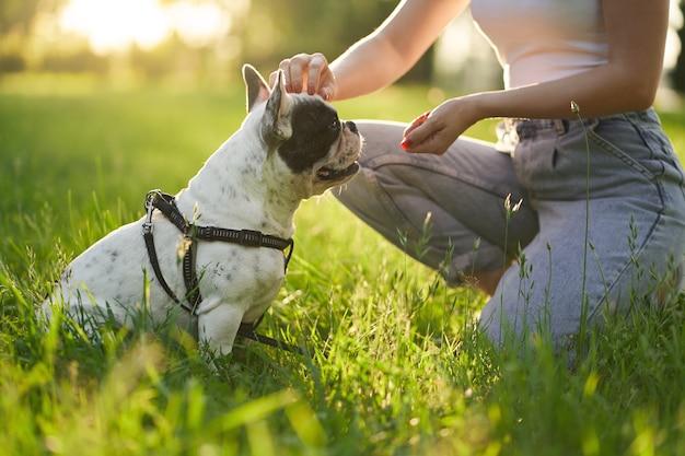 公園でフレンチブルドッグを訓練している認識できない女性