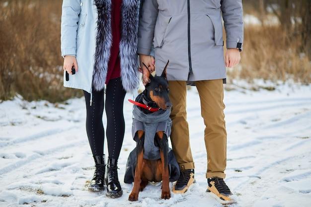 認識できない若いカップルと犬のドーベルマン屋外、自然の中で犬を歩く