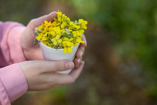 알아볼 수 없는 젊은 여성이 야생 노란색 유채 꽃 꽃다발을 손에 들고 있습니다. 유채 기름을 만드는 천연 유채
