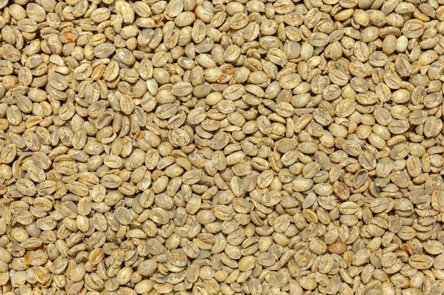 Unroasted artesanal 미식가 커피 콩 패턴