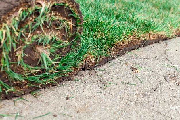 Развернутый зеленый рулон газона крупным планом