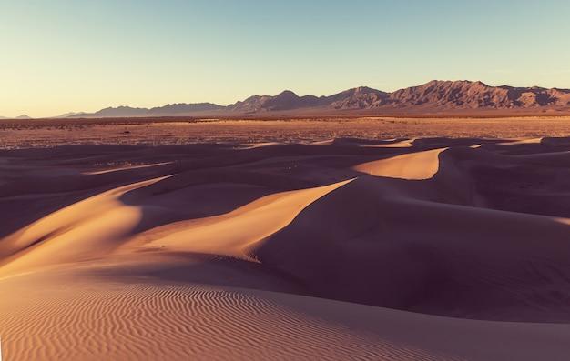 遠く離れた砂漠の手付かずの砂丘