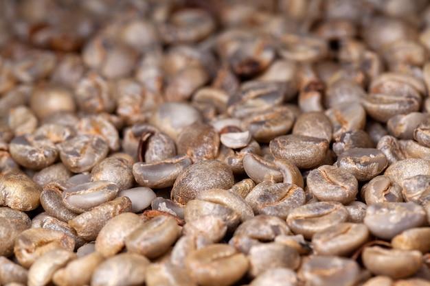 토스트되지 않은 유기농 커피 원두-coffeea arabica