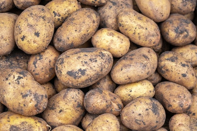 Untreated potatoes on sale at a farmers market stall, vagetable