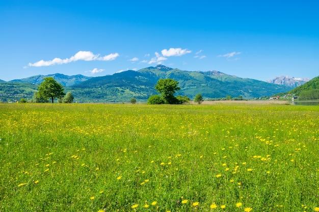 モンテネグロの美しい山頂にある珍しいプラヴ湖。