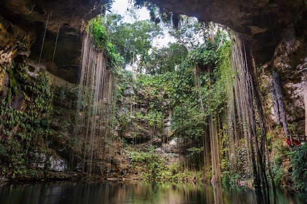 특이한 자연 열대 풍경-멕시코 ik-kil cenote