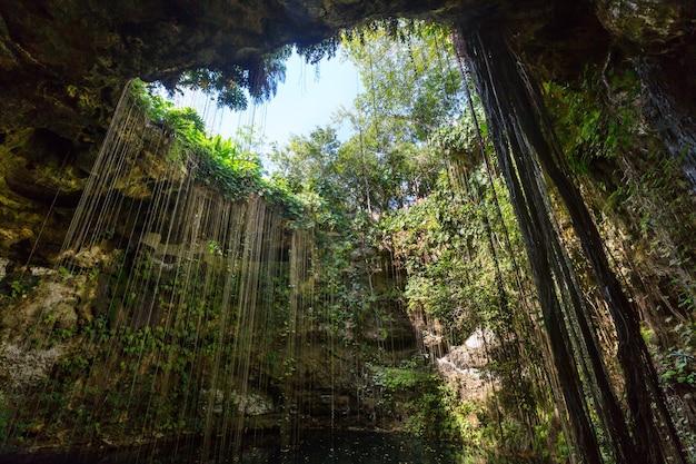 珍しい自然の熱帯の風景-ik-kilcenote、メキシコ