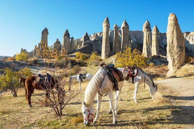 トルコの有名なカッパドキアの珍しい岩の形成