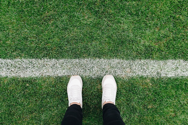 Up of grass and marks on football or soccer field 2019