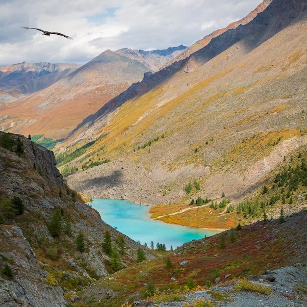 Озеро верхний шавлин на алтае