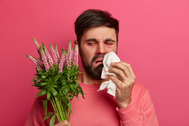 Upset displeased bearded man looks at plant which causes allergic reaction, rubs and blows nose with handkerchief, poses against pink wall. seasonal allergy, symptoms and sickness concept