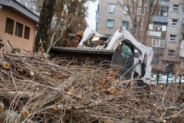 Urban emergency service removes a fallen tree on a road with special equipment traktor.