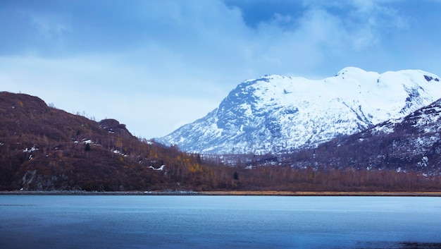 Usa, alaska, glacier bay national park, ice field, grassland, national park