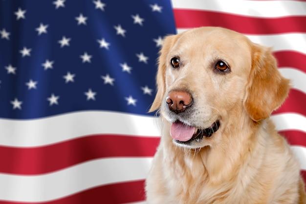 미국 독립 기념일 개념,