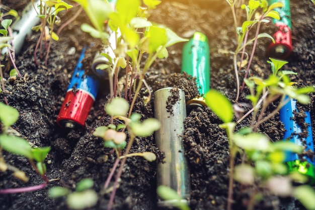 Used alkaline batteries lie in the soil where plants grow.