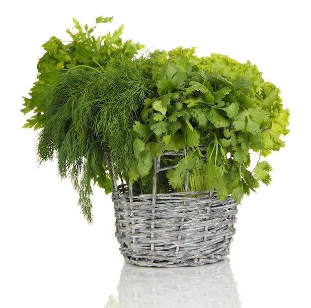 Useful herbs on white