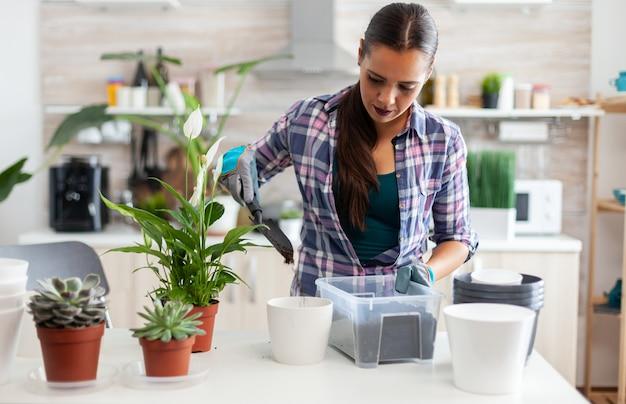 シャベルで肥沃な土をポットに使用し、白いセラミック植木鉢と観葉植物を家の装飾のために植え替えるために準備しました